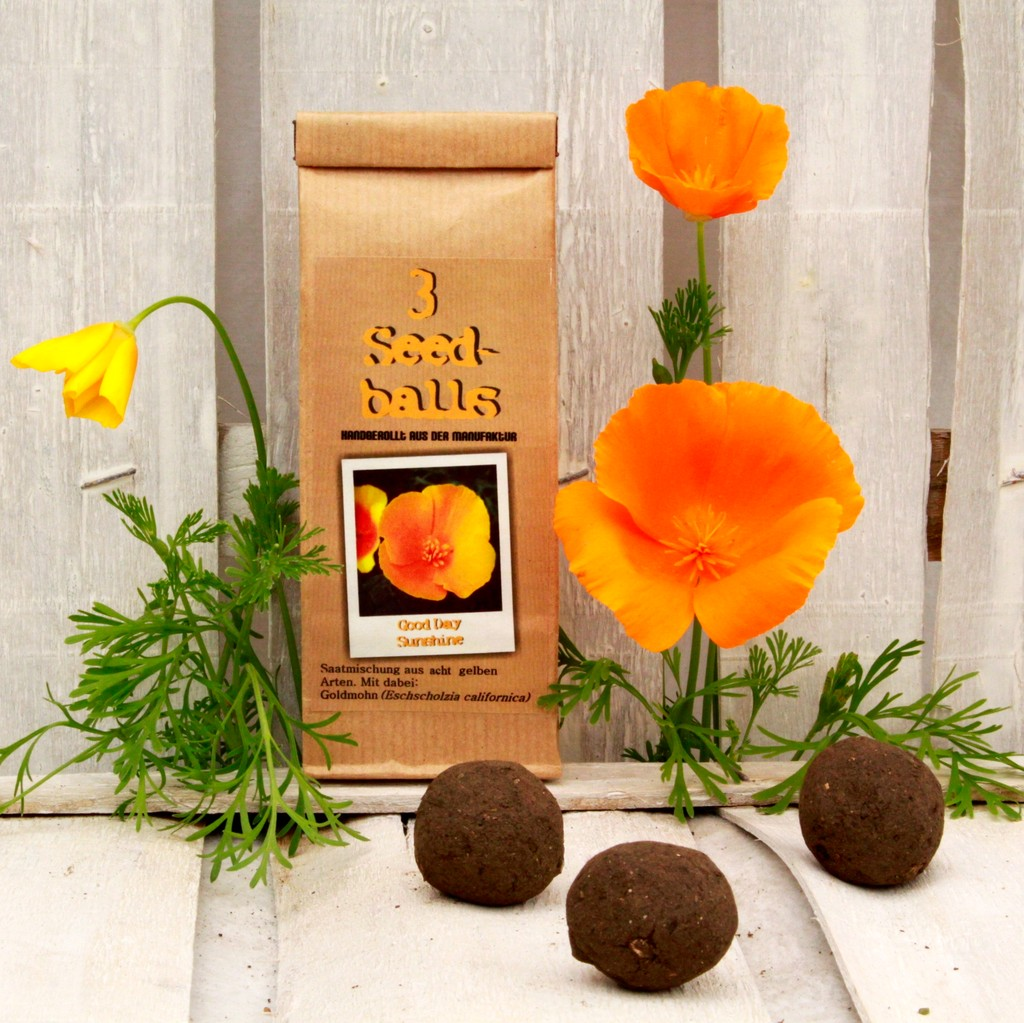 Seedballs Good Day Sunshine von Seedball Manufaktur
