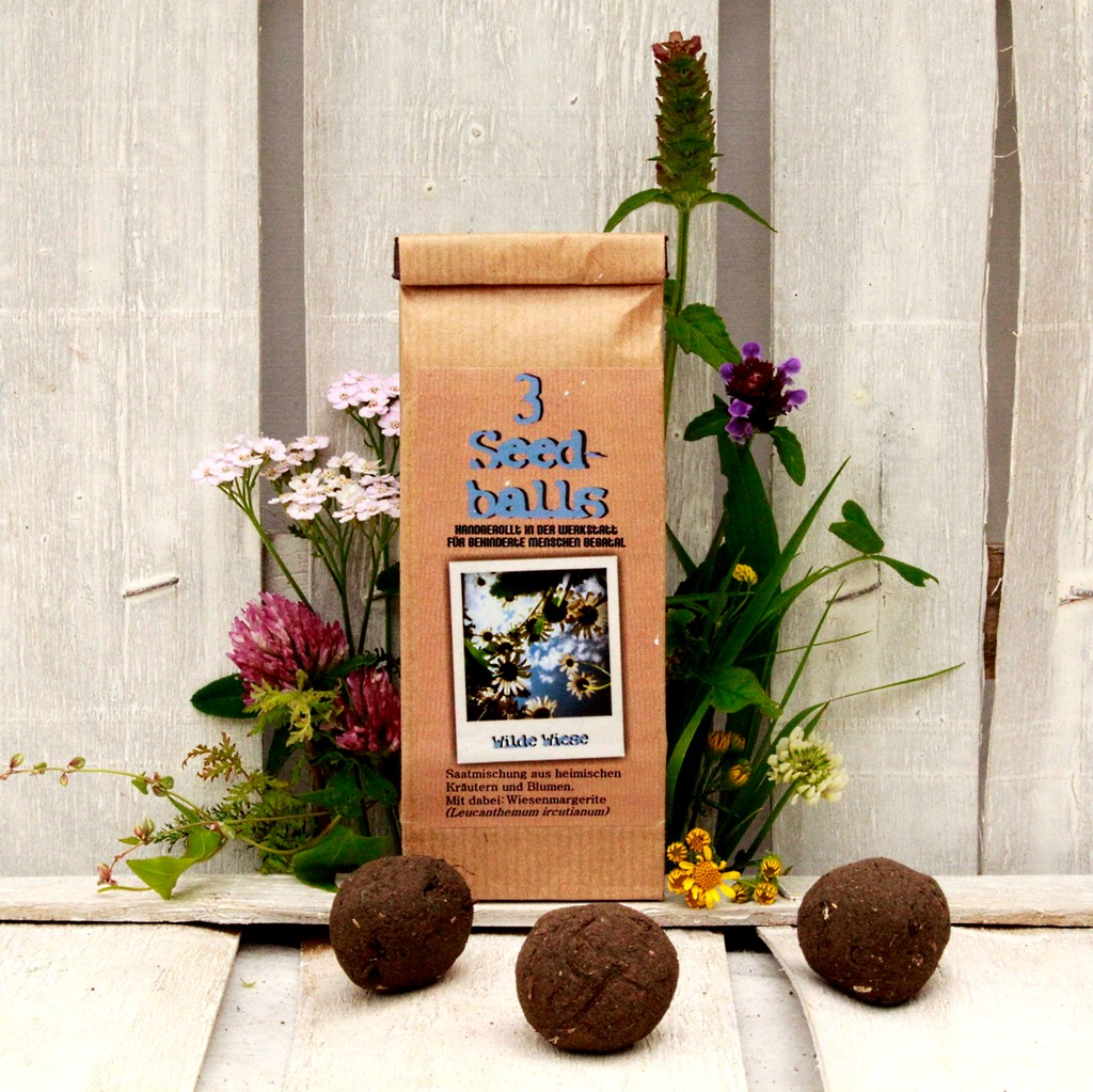 Seedballs Wilde Wiese von Seedball Manufaktur